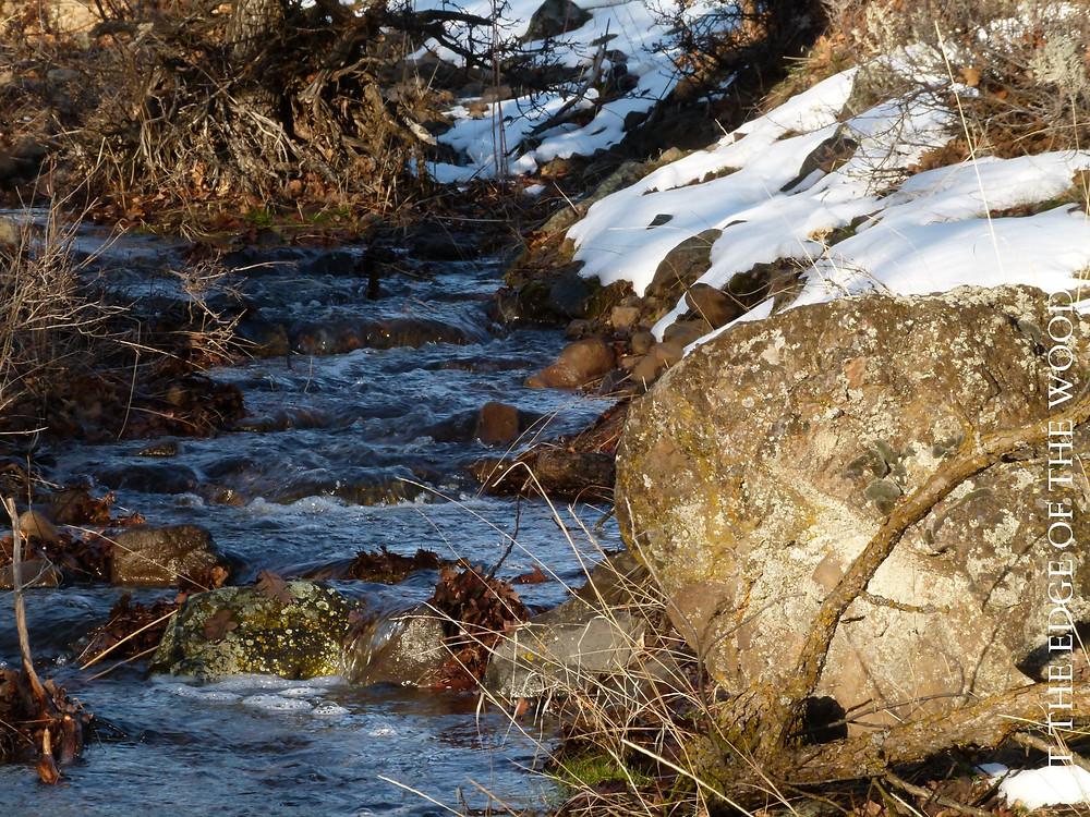 water flowing between snow-covered boulders