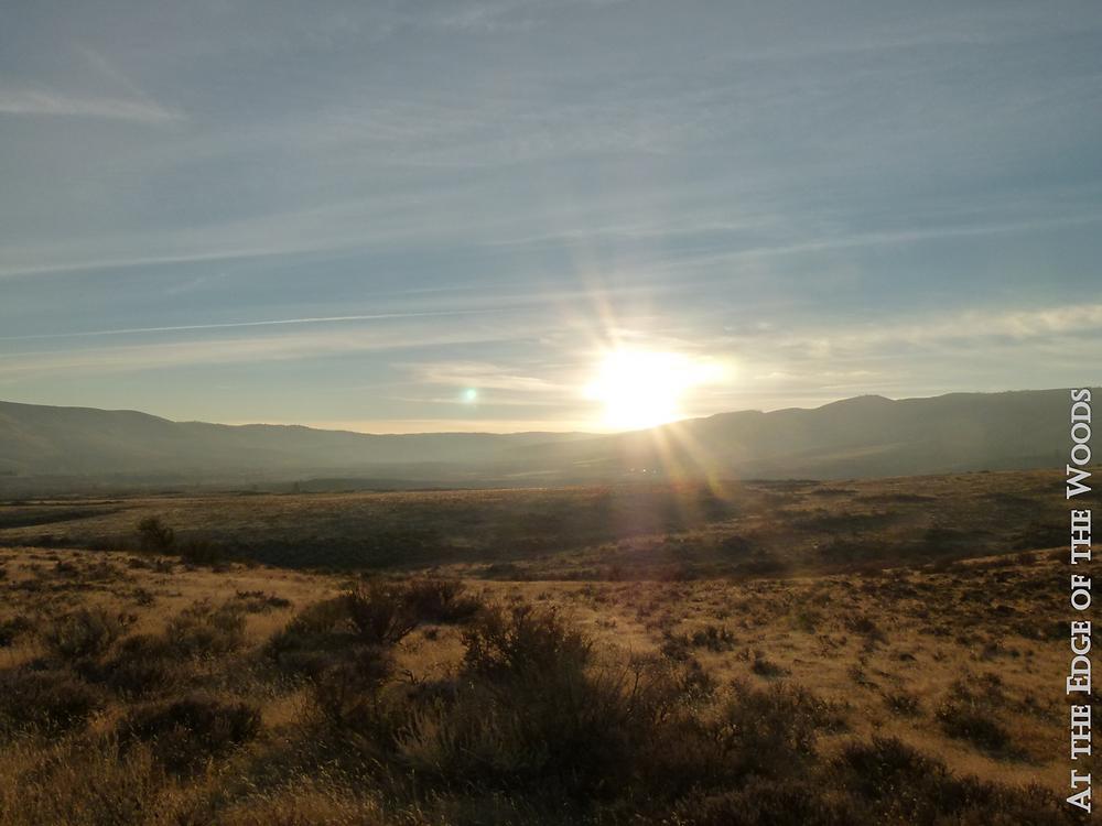 sunset over the shrub steppe