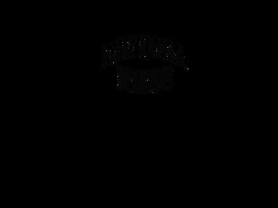 Logo IBIS.png