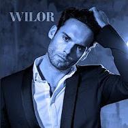 wilor_edited.jpg