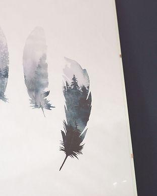feathers_2.jpg