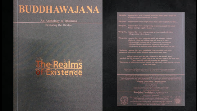 Buddhawajana Book Series - The Realms of Existence - Volume 11