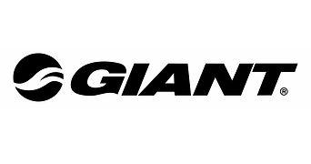 1900x1000 GIANT Logo.jpg