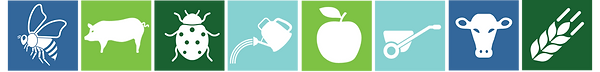 color blocks with icons.png