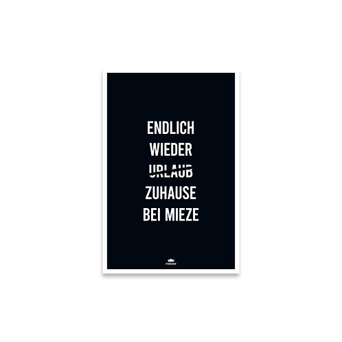Poster für Katzenliebhaber mit dem Text Endlich wieder Zuhause bei Mieze in schwarz