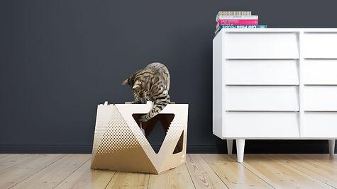 Katzenkarton meezee weiß bedruckt mit spielender Katze