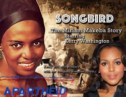 dPJ Wix Miriam Makeba Story