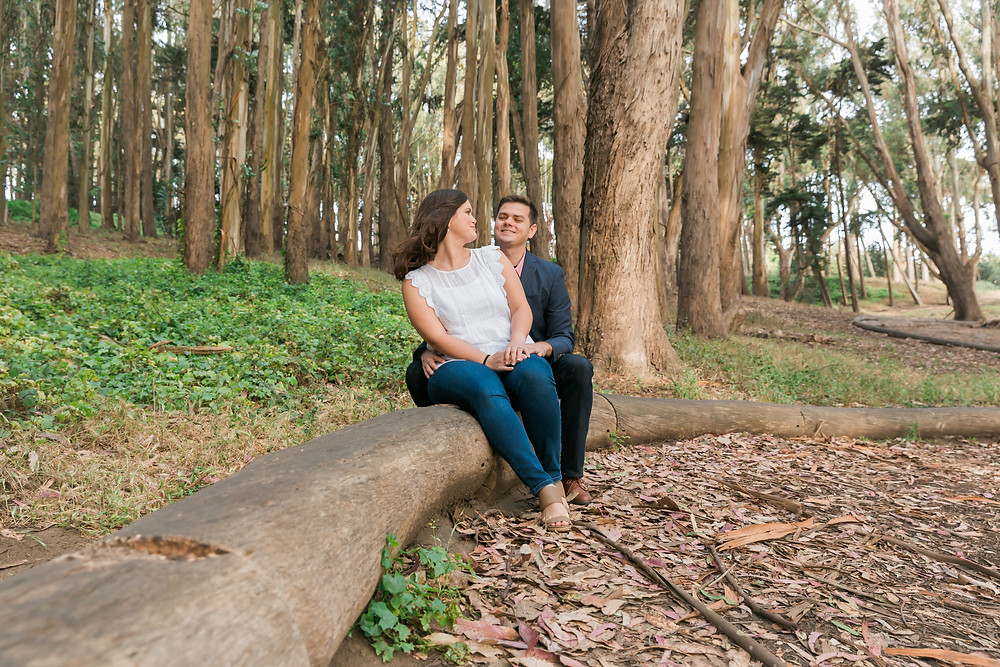 Andy Goldsworthy Engagement Photos