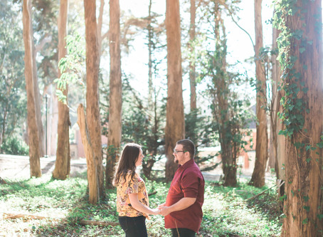 Andy Goldsworthy Woodline - Engagement Session