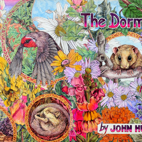 dormouse cover