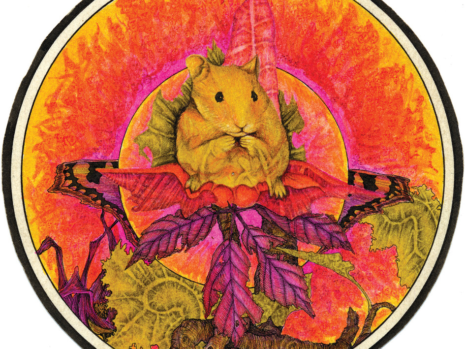 unused dandelion records label