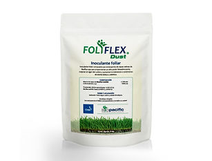 foliflex.jpg