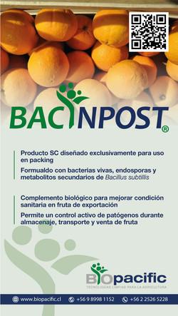 bacinpost-naranjas
