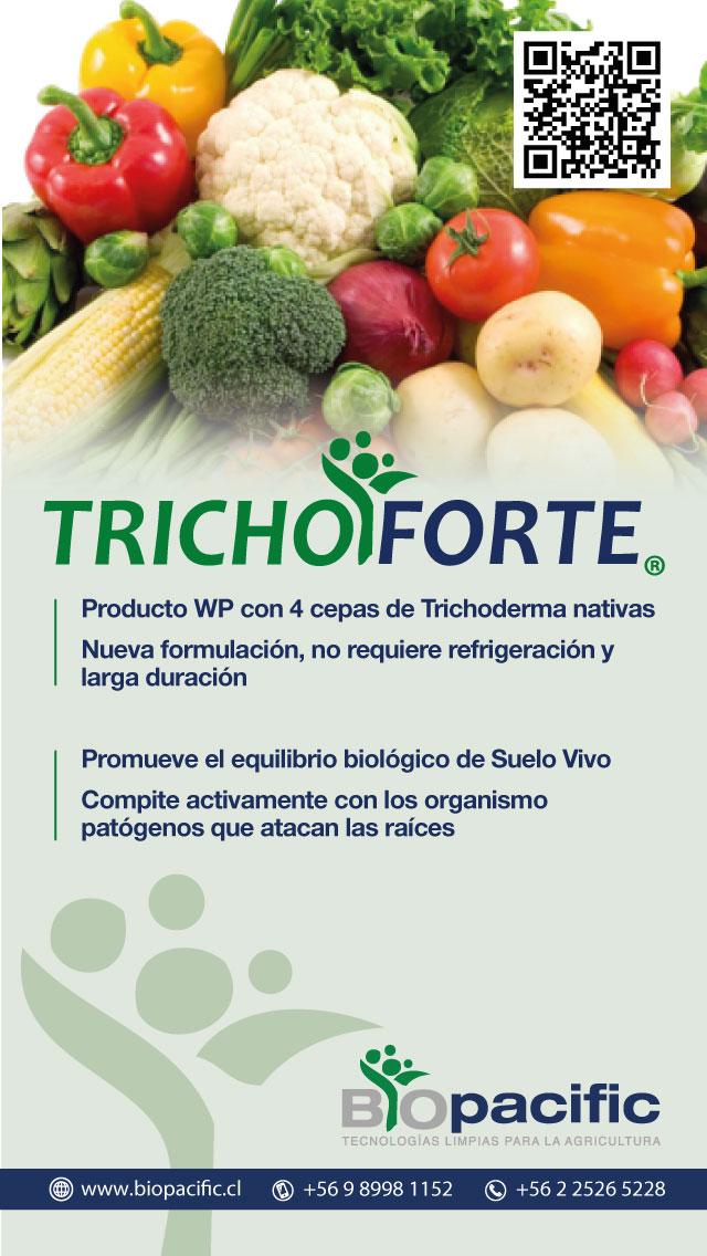 trichoforte-verduras