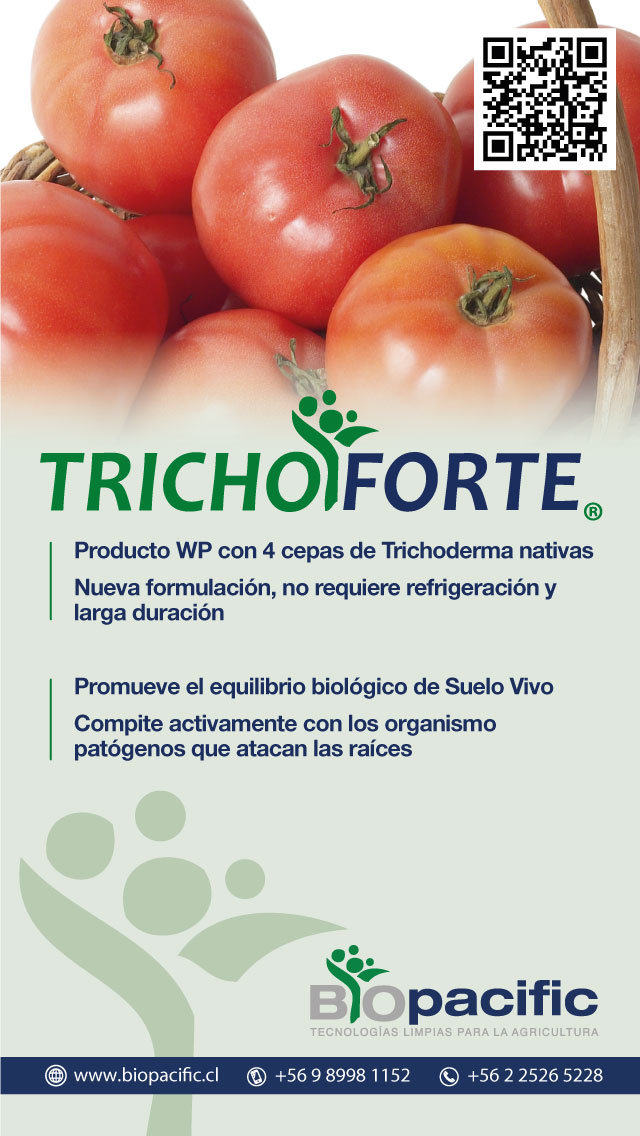 trichoforte-tomate