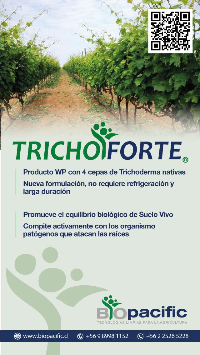 trichoforte-vid