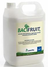 bacifruit.jpg