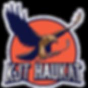 kjt_haukat_logo_site.png