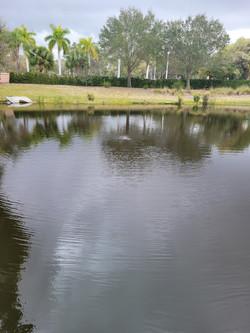 WaterPhoto1