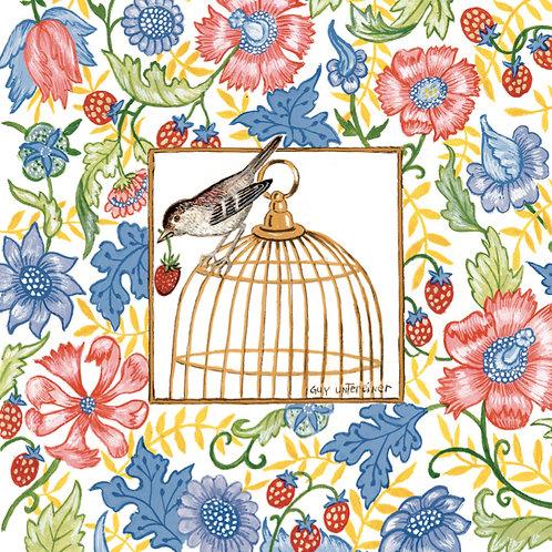 Carte Cage aux fleurs
