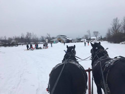 Group Sleigh Events