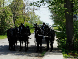 Country Carriage