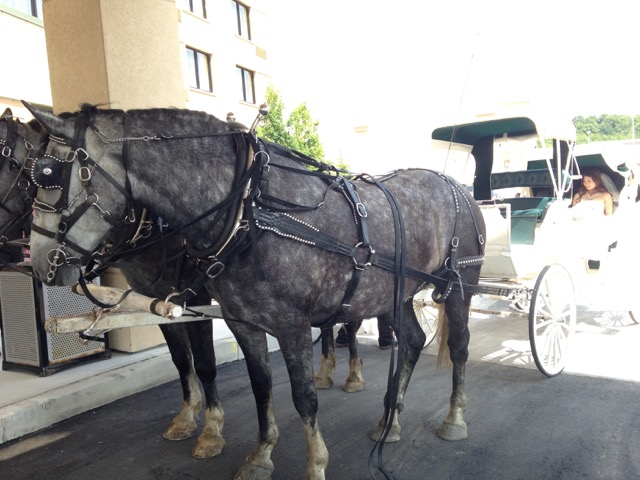 Carriage 2.2