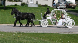 Carriage 1.2