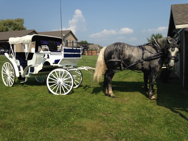 Carriage 2.9