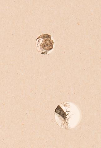 Detail.