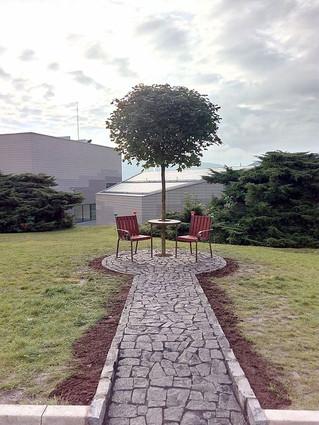 Lavicka v arealu Univerzity J. E.Purky