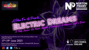 Electric Dream Final FB etc.jpg