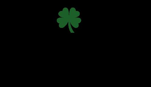 Irish Companies