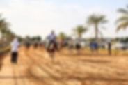 desert ride.jpg