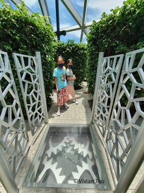 Hedge Maze Jewel Singapore kids activities canopy park