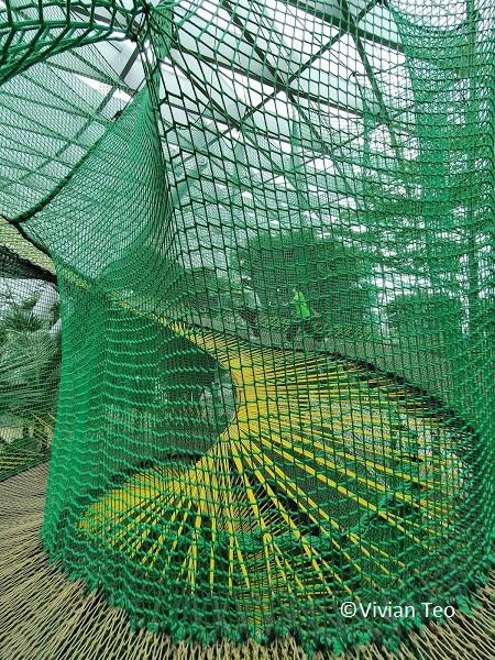 Bouncing Nets Jewel Canopy Park Singapore kids children activity crowd