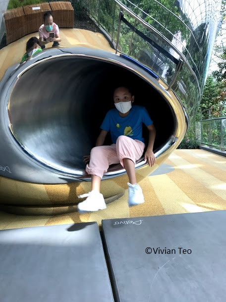 Canopy Park Jewel Singapore Changi Airport Discovery Slides