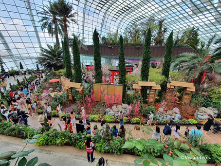Taking kids to Sakura Featuring Hello Kitty at Gardens by the Bay? Here are 8 must-knows!