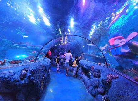 Is it worth taking the kids to SEA Life at Legoland Malaysia?