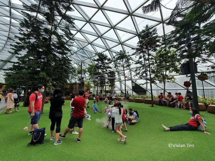 Bouncing Nets Jewel Canopy Park Singapore kids children activity crowd Foggy Bowls