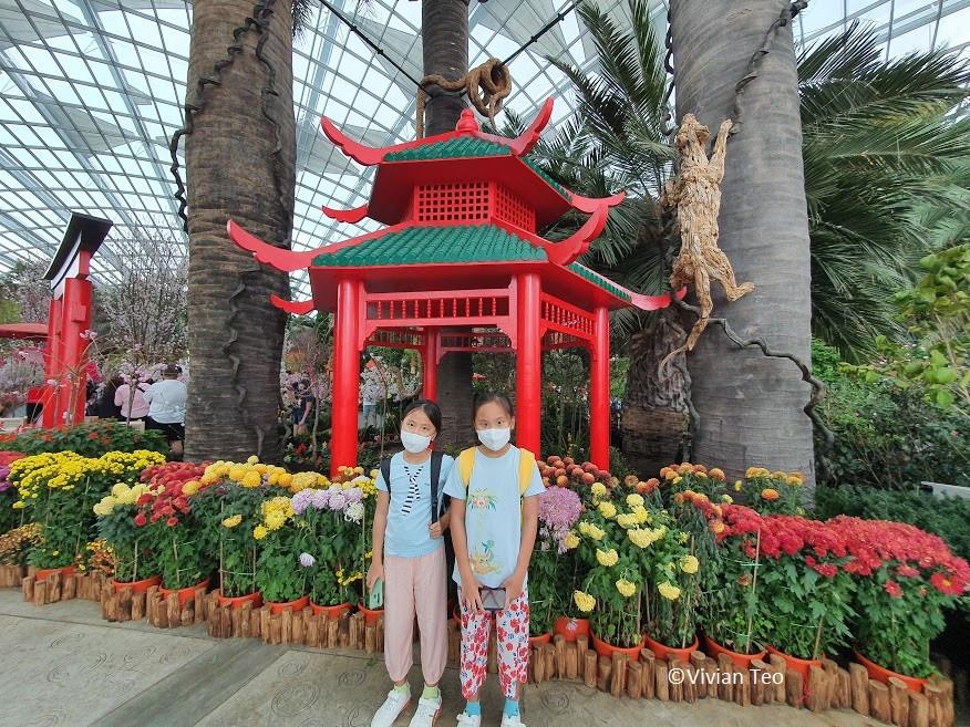 Gardens by the Bay GBTB Singapore Flower Dome Hello Kitty Sakura Cherry Peach Blossoms Flower kids indoor activities weekend