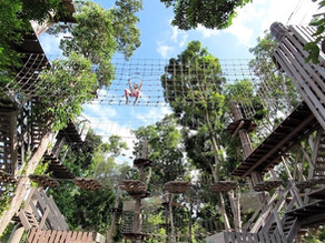 Is Forest Adventure at Bedok Reservoir for your kid?
