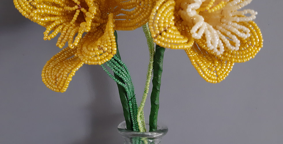 Daffodil (large)