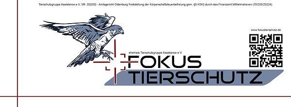 Facebook Banner neu mit Falke 09042021.j