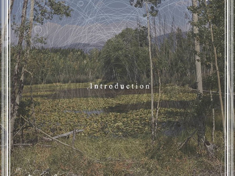 "New EP: ""Introduction"" by Green Cheek Beak"