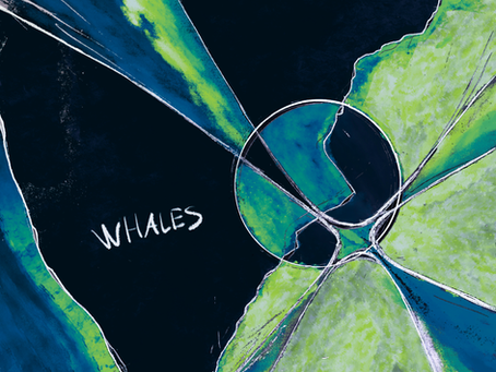 """New Single: """"Whales"""" by Heavenly Faded"""