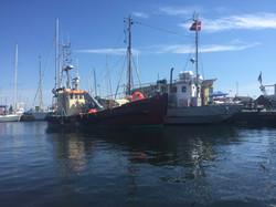 Skibet Gerda IV