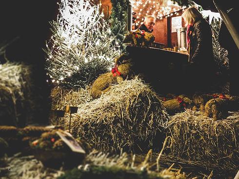 Julemarked på sjælland