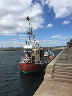 Skibet Gerda IV i Dragør Havn