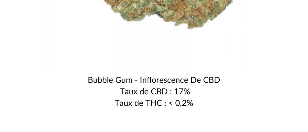 Bubble Gum - Inflorescence De CBD